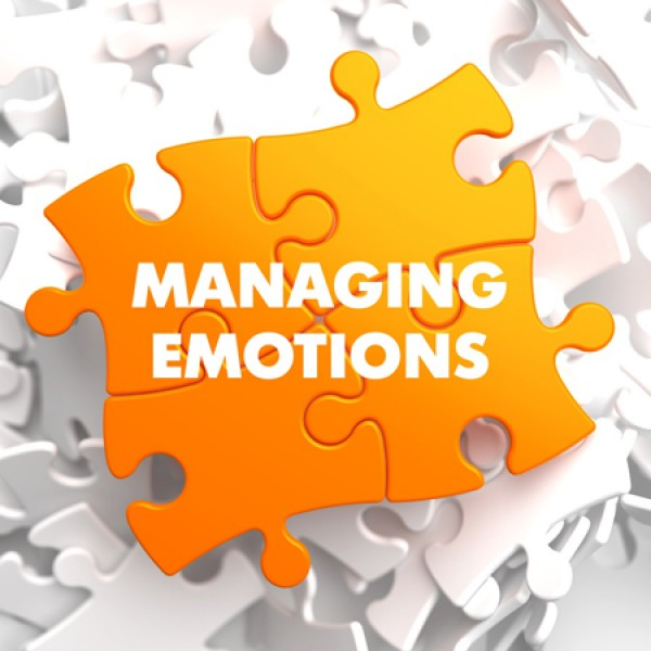 אינטליגנציה רגשית בסגירת תוכנית טיפול